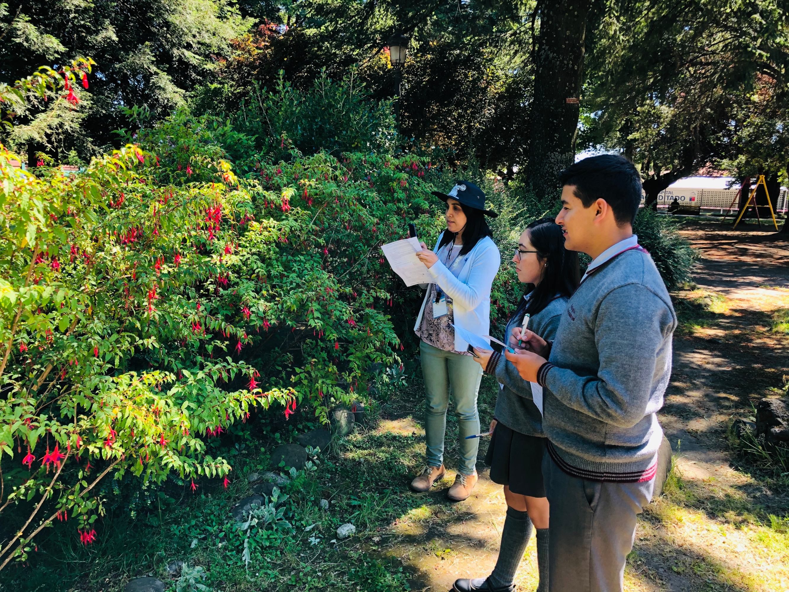 School children from the Araucania region studying pollinators